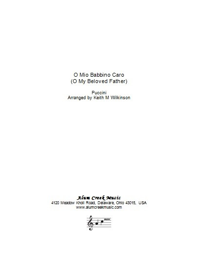 Sheet Music  - O Mio Babbino Caro by Puccini arranged Wilkinson